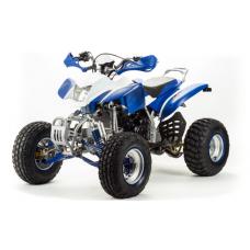 Квадроцикл Motoland 250 Dakar