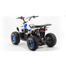 Детcкий квадроцикл Motoland 110 Eagle
